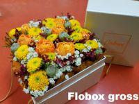 Flobox_gross3